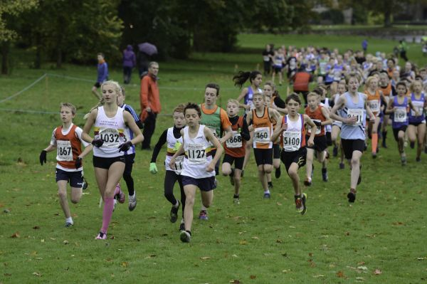 Cross Country - 24th Oct 2015